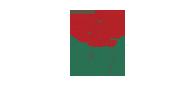 Petro 7 logo